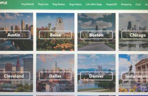 City Tours from Rover.com
