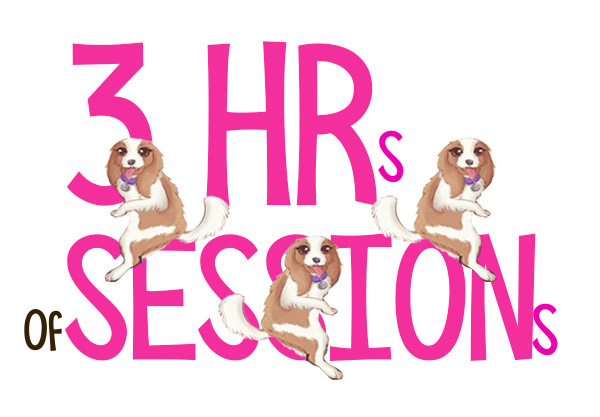 3 Hours of Sessions with Laura Schreiber